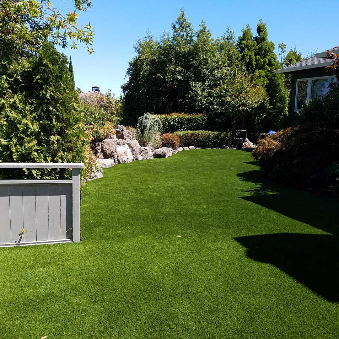 Kentfield SYNLawn