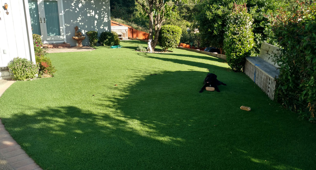 synlawn bay area novato artificial grass