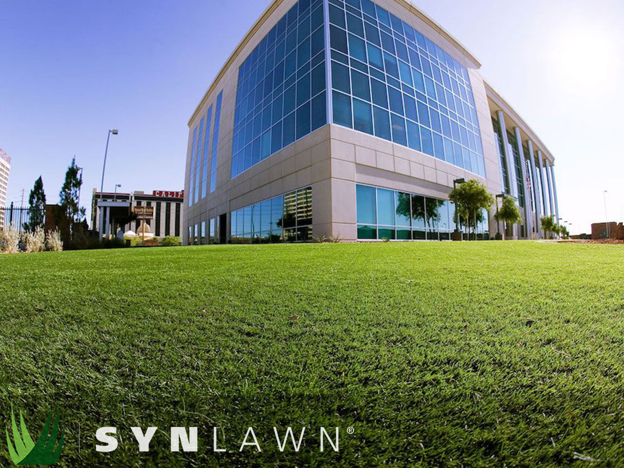 SYNLawn Commercial Photo 40