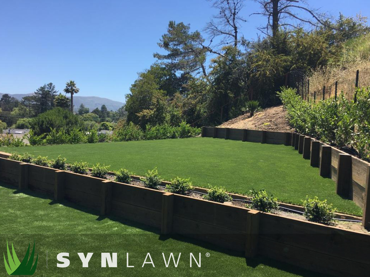 SYNLawn Landscape Photo 1