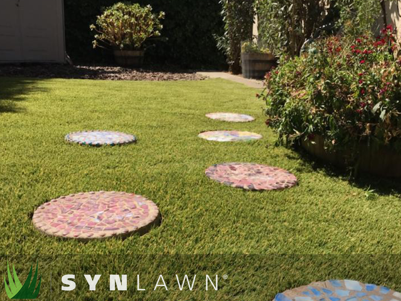SYNLawn Landscape Photo 12