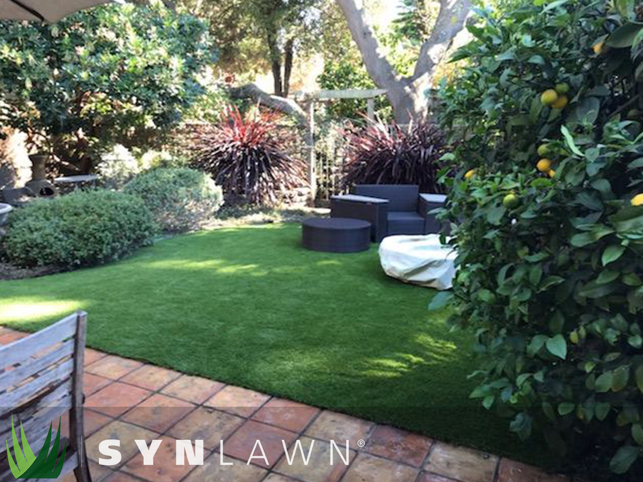 SYNLawn Landscape Photo 21