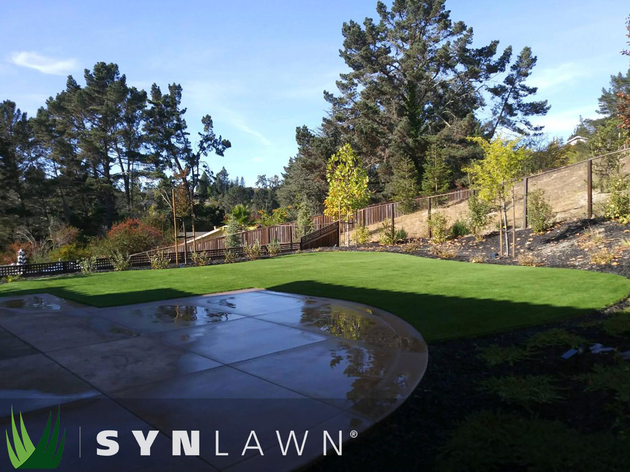 SYNLawn Landscape Photo 31