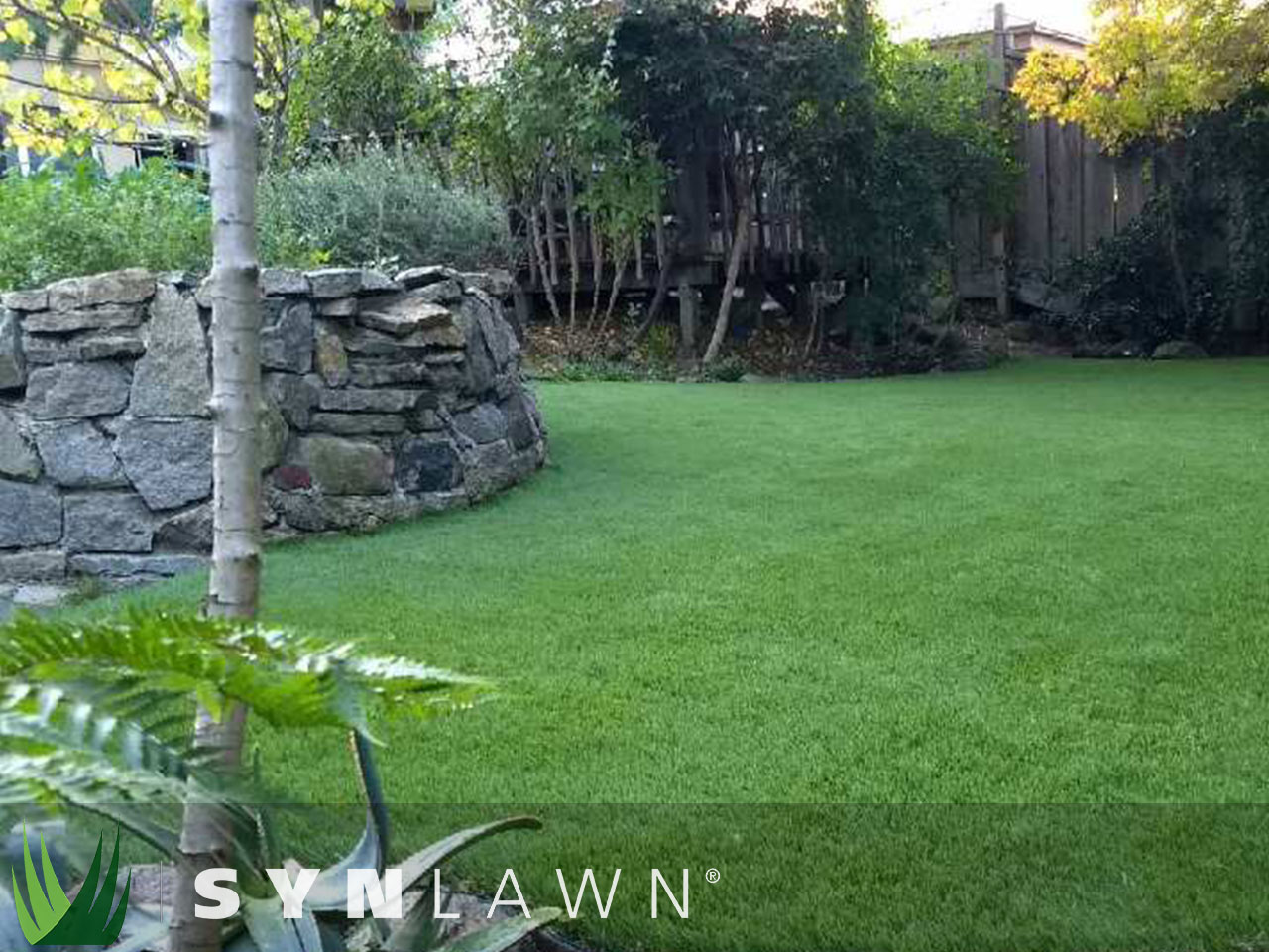 SYNLawn Landscape Photo 33